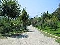 DEGIRMEN (Davutlar) 2 - panoramio.jpg
