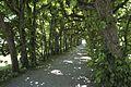 Dachau Schloss Hofgarten 959.jpg