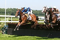 Steeple-Chase on Deauville-Clairefontaine racecourse
