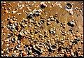 December AVIVO ALENTEJO Colors of Atlantic Ocean Faro - Master Magic Portugal Photography 1990 - panoramio.jpg