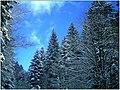 December Black Mountains Foret Noir - Master Mythos Black Forest Photography 2013 High Glotter Valley Sägendobel Pass - series Germany Diamond pictures - panoramio (1).jpg