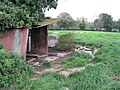 Decrepit sheep shelter - geograph.org.uk - 1006099.jpg