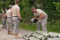 Defense.gov News Photo 080612-F-8517W-014.jpg