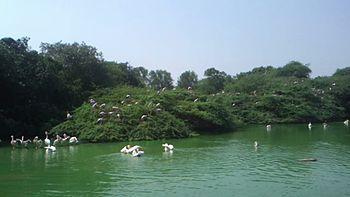 Delhi zoo 2.jpg