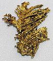 Dendritic gold (California, USA) 2 (17033552155).jpg
