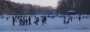 Denmark-Odense-winter at Skovsoeen