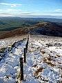 Descending the west ridge of Tinto - geograph.org.uk - 1058867.jpg