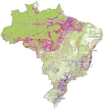 Desmatamento no Brasil – Wikipédia, a enciclopédia livre