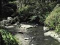 Divoká Šárka - panoramio (22).jpg