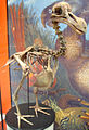Dodo skeleton2.jpg