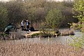Doggetts Farm Fishery 2 - geograph.org.uk - 157038.jpg
