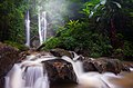 Doi Suthep-Pui National Park.jpg