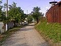 Dolna Hubavka - panoramio.jpg