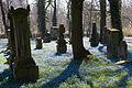 Dom- und St. Magnifriedhof.jpg