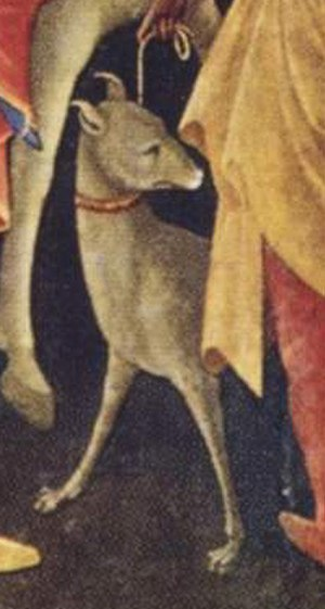 Adoration of the Magi (Lorenzo Monaco) - Detail of the hound.