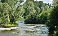 Donau - panoramio (3).jpg