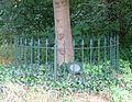 Driebergen Beatrixboom 1.jpg
