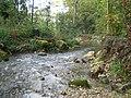 Drize River1.jpg