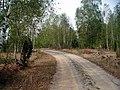 Drum spre Boia Bârzii - panoramio (2).jpg