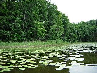 Iława Lake District Landscape Park