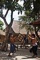 Dua Bocah Sasak Bertarung Prisean - Two Sasaknese Boys Fighting Prisean (1).jpg