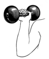Dumbell (PSF).png