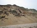Dune Slumping (2894186683).jpg