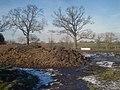 Dung heap on High House Farm - 2 - geograph.org.uk - 1353577.jpg