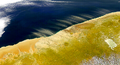 Dust storms off the northern coast of Namibia (satellite view - 10 May 2000).png