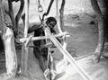 ETH-BIB-Der Weber von Ouagadougou- unaufhörlich arbeitet er mit Händen und Füssen-Tschadseeflug 1930-31-LBS MH02-08-0871-AL-FL.tif