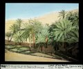 ETH-BIB-El Oued Souf, kl. Oase mit Brunnen-Dia 247-03816.tif
