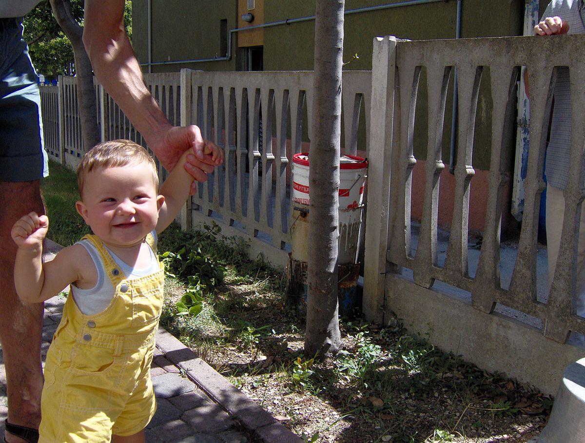 Наука о развитии ребенка в раннем детстве thumbnail