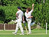 Eastons CC v. Chappel and Wakes Colne CC at Little Easton, Essex, England 09.jpg