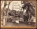 Eden Gardens, Calcutta by Francis Frith (1).jpg