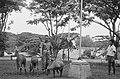 Een majoor van het KNIL bij twee herten en een dwergbuffel, Bestanddeelnr 462-4-6.jpg