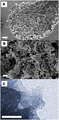 Electron microscopy images of Upsalite.png