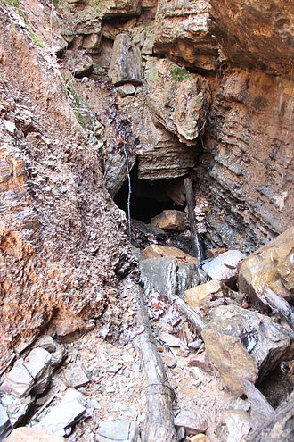 Ellison's Cave - Image: Ellison's Cave dug entrance, Georgia