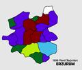 Erzurum1999Yerel.png