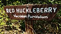 Explore Oregon Recreation Fishermen's Bend Area (32731472662).jpg