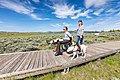 Exploring the Forces of the Northern Range boardwalk (4) (48324463297).jpg