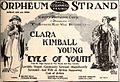 Eyes of Youth (1919) - 1.jpg