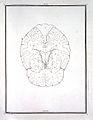 F. Vicq d'Azyr, Traite d'anatomie et de physiologie Wellcome L0022080.jpg