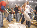 FEMA - 40297 - Residents working into the night to build a sand bag levee in North Dakota.jpg