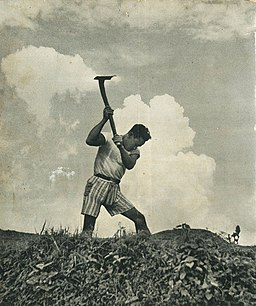 Farmer with hoe, Indonesia Tanah Airku, p96