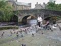 Feeding the ducks - geograph.org.uk - 1031753.jpg