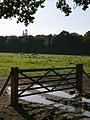 Field behind Moonhills, Furzley - geograph.org.uk - 462246.jpg