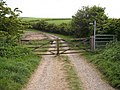 Field gates and farm track - geograph.org.uk - 430529.jpg