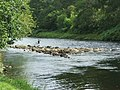 Fishing on the River Oich - geograph.org.uk - 429498.jpg