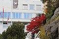 Fist Solborg hotel - panoramio.jpg