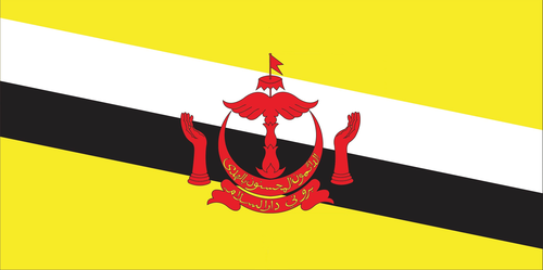 Flag of Brunei Darussalam.png